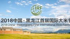 独家直播:2018中国·黑龙江首届国际大米节