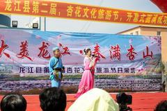 齐齐哈尔龙江县举办第二届杏花旅游文化节