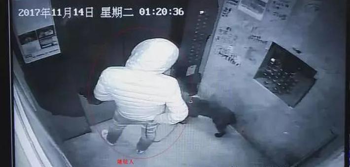 """男子假扮""""业主""""牵狗散步 偷遍小区"""