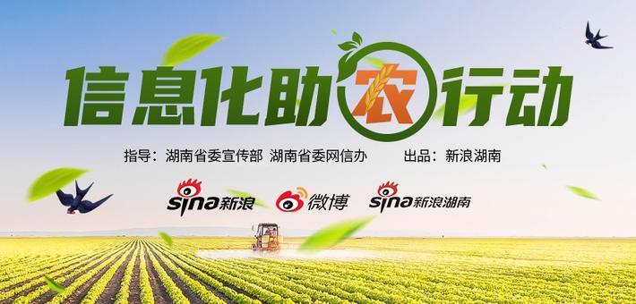 信息化助农行动