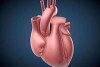 苏州一女子胸闷医院就诊 查出心脏长右边