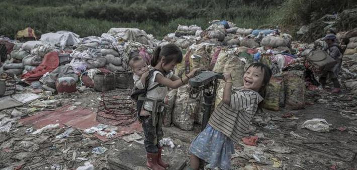 11月起南京未按规定垃圾分类将受罚