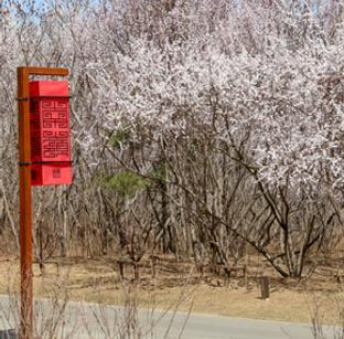 长春水文化生态园寻春日阳光