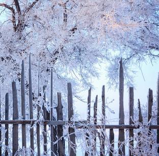走进雪国吉林 眼前处处是美景