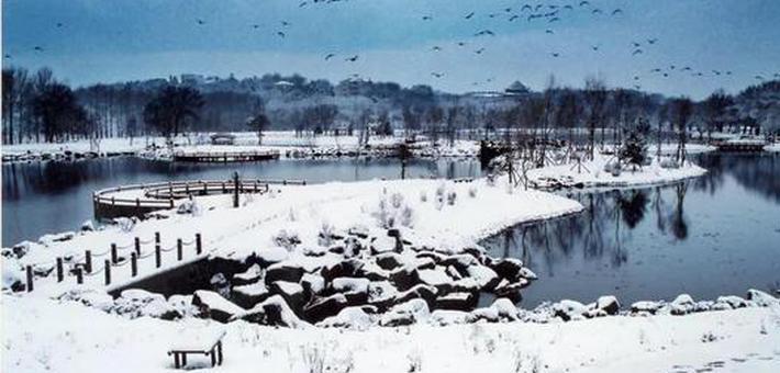 净月潭雪后美景如画