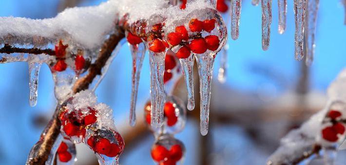 看这里!吉林的冰溜子比钻石还美?!