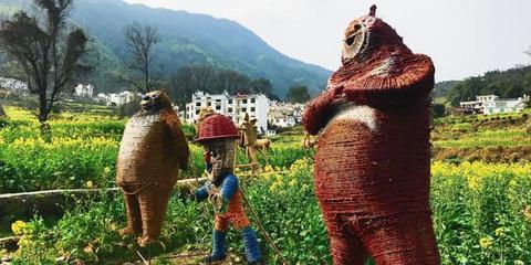 婺源打造稻草乐园景观 扮靓油菜花海