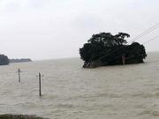 受上游来水影响鄱阳湖水位高位缓退 江西无新增灾情