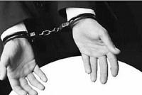 男子设假冒最高检网站致他人损失巨大 获刑2年