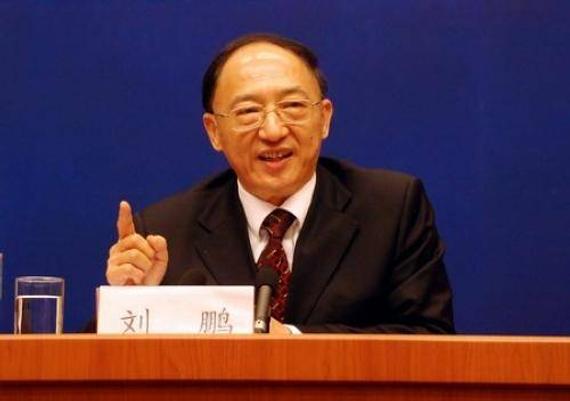 刘鹏为外事委员会副主任