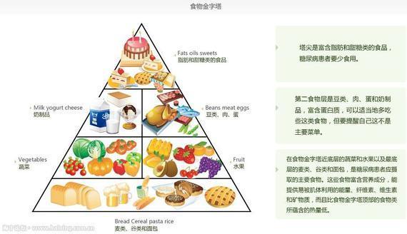应遵循食物金字塔的规律
