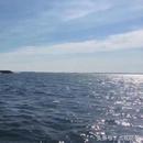 俄核潛艇出海參加閱兵 通過丹麥大橋驚到釣魚人(圖)
