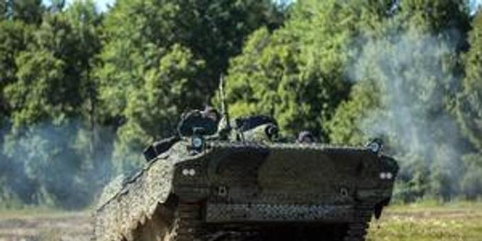 驯鹿闯入芬兰军演地致装甲车追尾 12名士兵就医