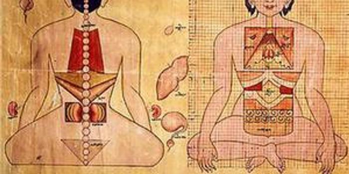 """印媒:印度想为藏医学""""申遗"""""""