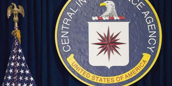 CIA前特工被判19年 承认