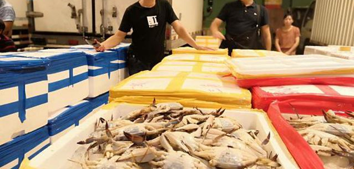 宁波收获全面开渔第一网
