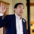 美华裔参选总统惹争议:征税大企业 民众每月发钱