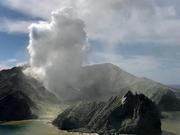新西兰怀特岛悲剧本可避免?英媒:岛上有避难设施