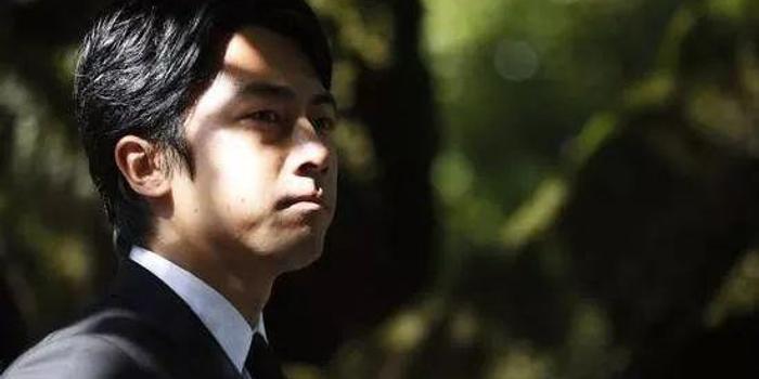 """日本""""政坛王子""""十年血泪上位史:目标接替安倍?"""