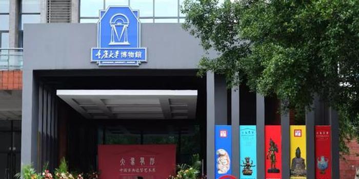 重慶大學博物館被疑贗品:參評專家表示并未鑒定