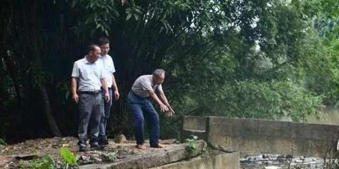 81岁老人只身跳下4米深河救人:这是人命啊