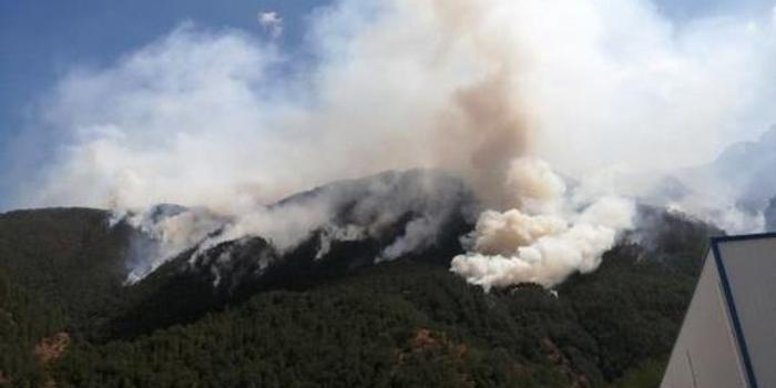 广东双色球_凉山火灾目前过火面积19公顷 490人分南北线扑救