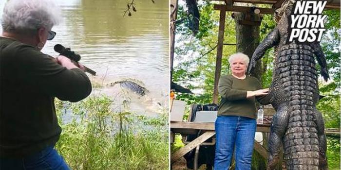 美国老太为给宠物马报仇 一枪打死3.7米长鳄鱼
