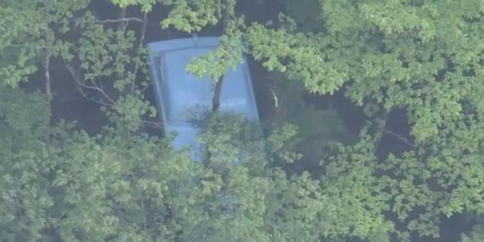 日本一大巴从10米高悬崖坠落 19人受伤