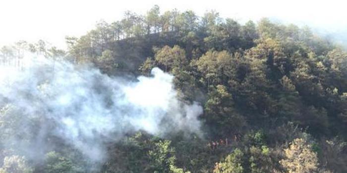 云南大理弥渡山火火势已全面封控 起火原因正调查