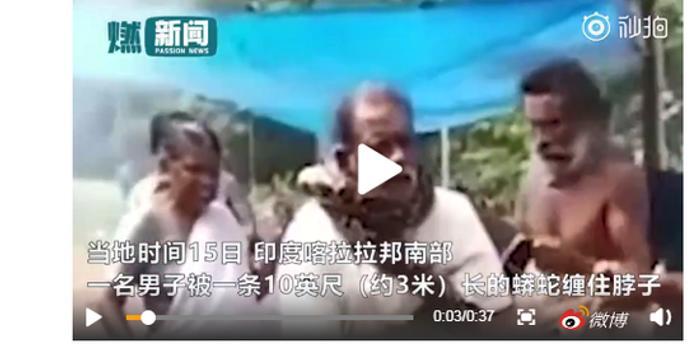 """印度男子欲营救3米长蟒蛇 不料遭蛇瞬间""""锁喉"""""""