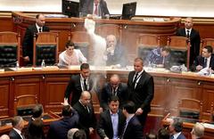 阿尔巴尼亚议会现骚乱 反对党成员向总理泼水扔面粉