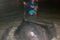南非男子钓到381斤巨型黄貂鱼 花了8个小时才拉上岸
