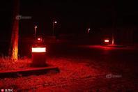 """荷兰小镇为保护蝙蝠设""""红光""""路灯 居民抗议:不想住红灯区"""
