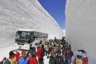 """日本""""雪墙公路""""对公众开放"""