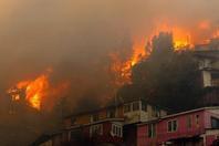 智利突发森林大火 熊熊火焰吞没大量房屋