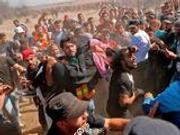 白宫:哈马斯应该为加沙地带冲突伤亡负责