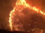捉谣记|山西屯留县山林起火 群众参与救火每人每天300元系谣言!