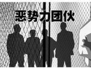 恶势力犯罪集团黑社会组织区别何在?公安部释疑