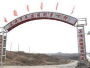 李利娟被指阻工投资千亿项目 爱心村曾三年未年检