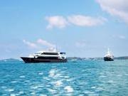 泰国出台普吉游船标准 百艘游船不达标被暂停出海