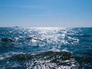 泰致47死沉船凤凰号打捞进展:装气缸增加船体浮力
