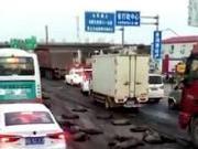 捉谣记|南昌大学化粪池爆炸?校方及交警辟谣