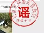 捉谣记|河北沧州多地出现金钱豹?警方:移花接木的谣言