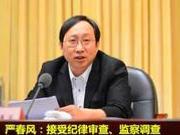 """""""严书记""""受贿案一审宣判:获刑10年 罚金60万"""