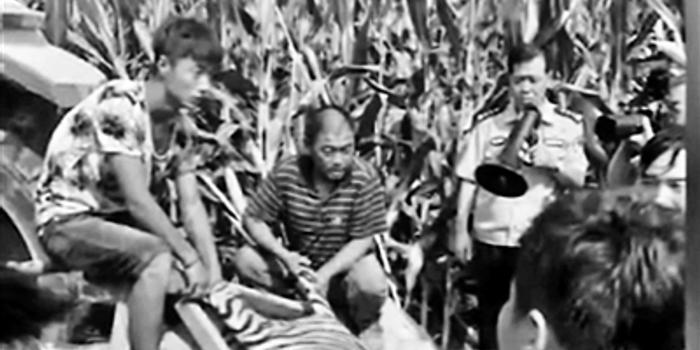 """演出时""""越狱""""老虎已被捕获 马戏团负责人被刑拘"""
