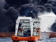 桑吉轮沉没海洋生态环境受影响 事故或因疏于瞭望