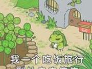 环球时报谈旅行青蛙为何火:流行文化在游戏上映射