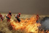 呼伦贝尔新巴尔虎左旗发生草原火灾