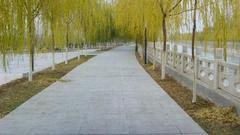 探秘老银川:西门桥的故事