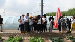 【2018网络媒体宁夏行】西吉县:发展订单蔬菜种植助力脱贫